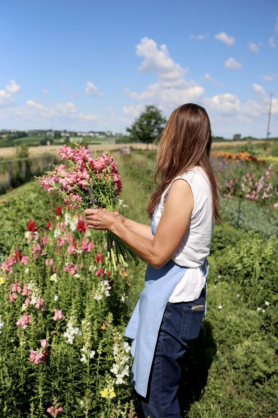 flourishflowers22